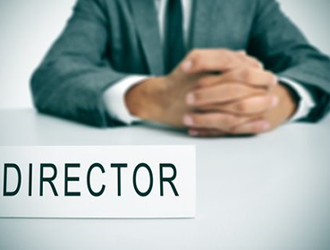 Director check: what is it and how can it benefit you?
